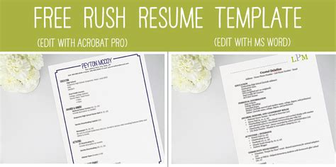 Sorority Affiliation On Resume by 101 Perfecting Your Resume