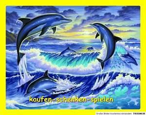 Schöne Delfin Bilder : malen nach zahlen delfine im meer delfin gr e 39 cm x 30 cm komplett tiermotiv ebay ~ Frokenaadalensverden.com Haus und Dekorationen