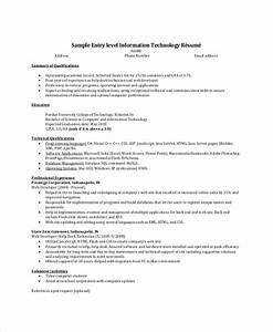 8 resume summary samples examples templates sample With entry level resume summary