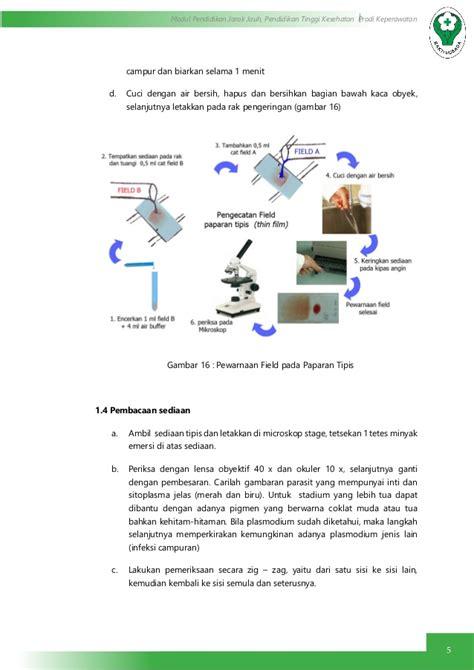 pemeriksaan darah protozoa parasit malaria