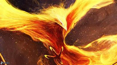 Phoenix Bird Digital Fenix Anime Wallpapers Dark