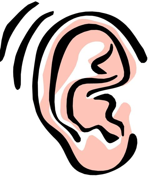 animated ears clipart best