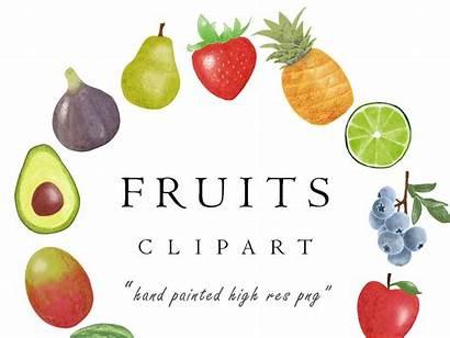 Fruit Clipart Watercolor Dribbble Save Shots