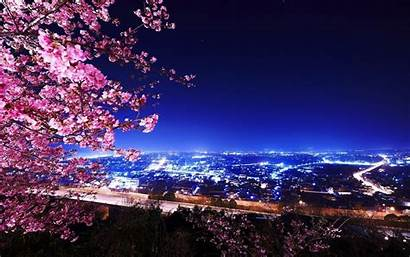 Sakura Wallpapers 1050 1680
