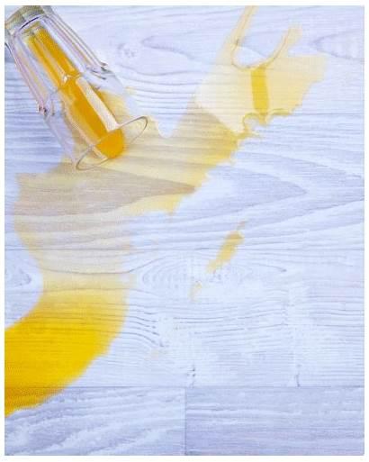 Sponge Cleaning Essentials Kit Diy Animated Juice