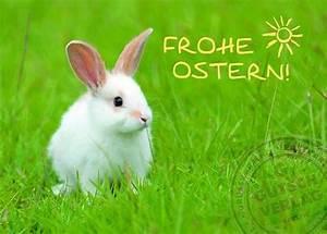 Frohe Ostern Lustig : postkarte frohe ostern ~ Frokenaadalensverden.com Haus und Dekorationen