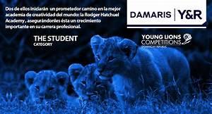 Young Rubicam Damaris