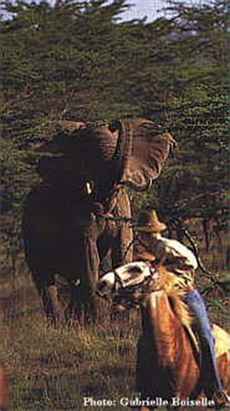 horseback riding vacations kenya horse riding safaris
