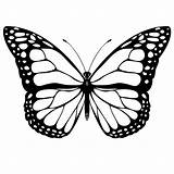 Butterfly Coloring Pages Printable Butterflies Sheets Sheet Template Monarch Printables Colour Printing Prints Fly Templates Google Worksheets Patterns Adult sketch template