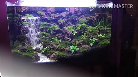 Aquascape Waterfall by Aquascape Sandfall Waterfall With Clif In Tank