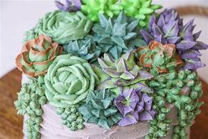 Succulent Cakes Are A Thing Now – LatinGlam com