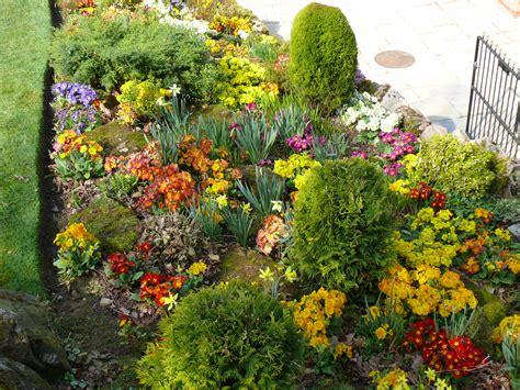 planting flowers in summer bedding plants jhps jhps