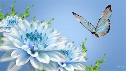 Flowers Computer Flower Desktop Wallpapers Pretty Backgrounds