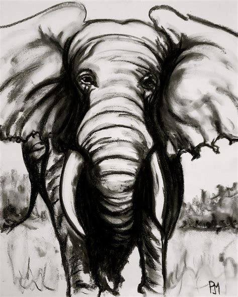 images  charcoal drawing  pinterest charcoal
