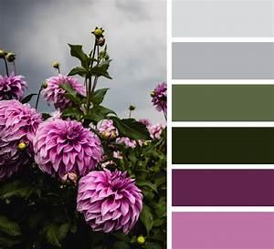 Welche Farbe Passt Zu Anthrazit : diese farben passen zu khaki tipps und ideen f r ein perfektes outfit ~ Udekor.club Haus und Dekorationen