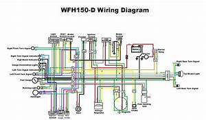 Gy6 150 Wiring Diagram Diagrams Schematics And 150cc Hbphelp Me New