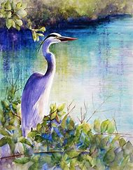 Great Blue Heron Watercolor Paintings