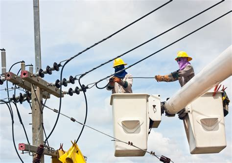 dont birds sitting  overhead wires  electrocuted