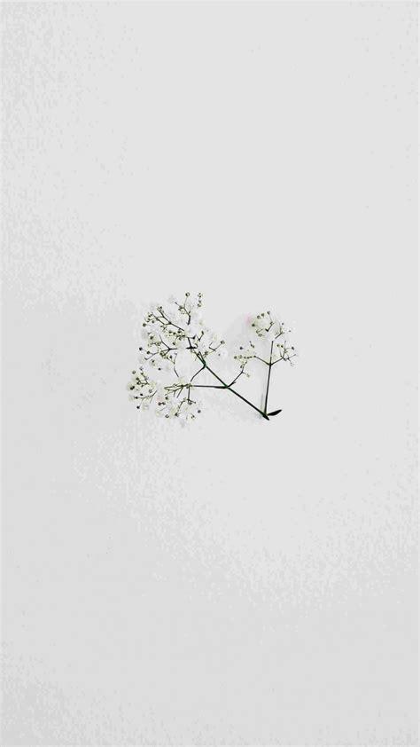 aesthetic minimalist white wallpaper iphone iphone