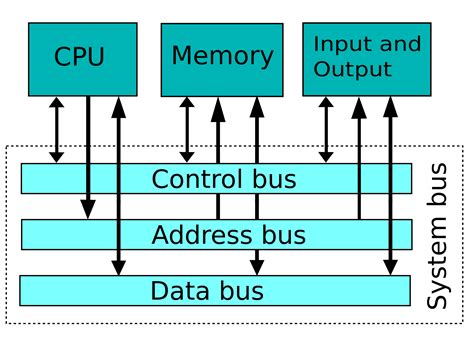 Architettura Di Von Neumann  Elaboratori  Knowledge Is