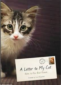 i my cat aerosmith s joe perry writes sweet letter to his cat