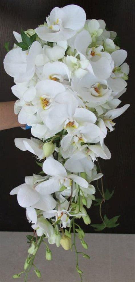 bridal cascade bouquet orchids ivy tfm wb462 party