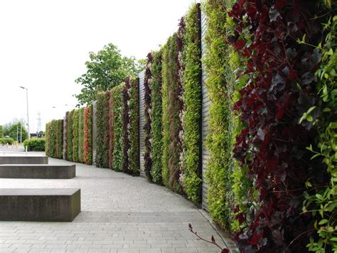 Environmental Values Of Green Walls (exchange