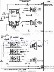 Automotive Cooling  Wiring Diagram Top Cooling Fans