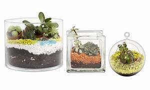 les 10 regles pour un terrarium reussi detente jardin With comment realiser un jardin zen 15 comment decorer vase avec sable