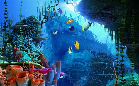 aquariums images aquarium fond d 233 cran hd fond d 233 cran and background photos 40193625