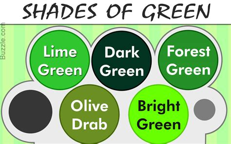 Different Shades by Different Shades Of Olive Green Tyres2c
