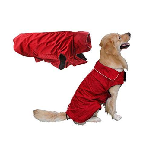 regenmantel für hunde mit bauchschutz hunde regenjacke test vergleich top 25