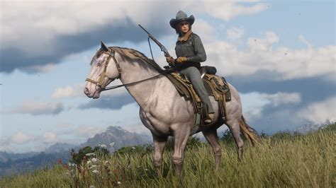 red dead redemption   update adds  ps timed