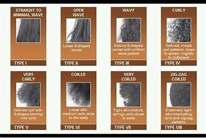 Types Hair Type Chart Curl Natural Mizani
