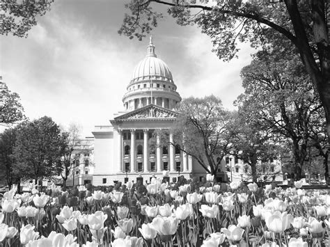 wisconsin legislative reference bureau contentdm in