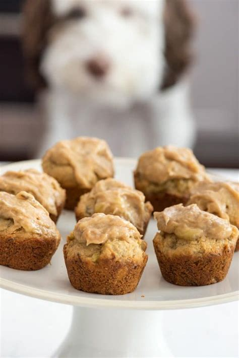peanut butter pupcakes  friday crazy  crust
