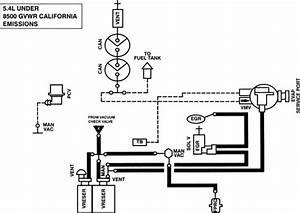 31 1999 Ford Expedition Vacuum Hose Diagram