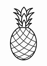Coloring Fruit Pages Printable Drawing Pineapple Line sketch template
