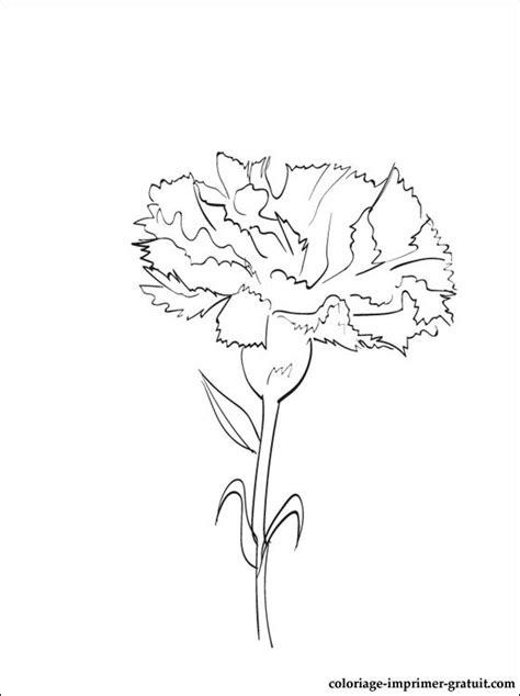 azuzena flower template dessin et coloriage œillet 224 imprimer coloriage 224