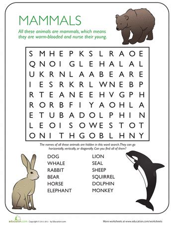 animal word search mammals pe 2nd grade worksheets
