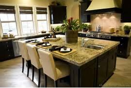 Ideas For Kitchen Designs by Modern Furniture Asian Kitchen Design Ideas 2011 Photo Gallery