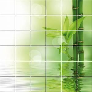Carrelage bambou wikiliafr for Carrelage salle de bain bambou