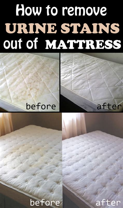 clean urine from mattress how to remove urine stains out of mattress