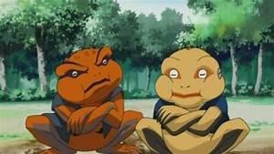 Frogs of Naruto 🐸 | Anime Amino