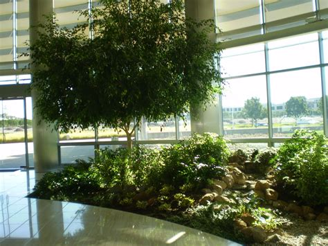benefits of interior landscaping take indoor plants to the
