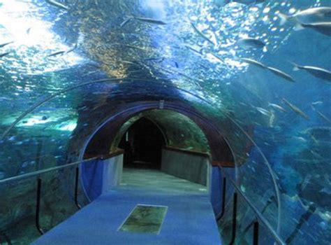 los 11 museos de gipuzkoa m 225 s importantes
