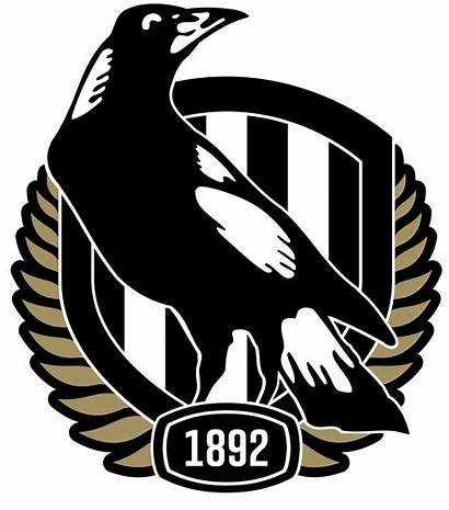 Collingwood Football Club Afl Logos Magpies Team