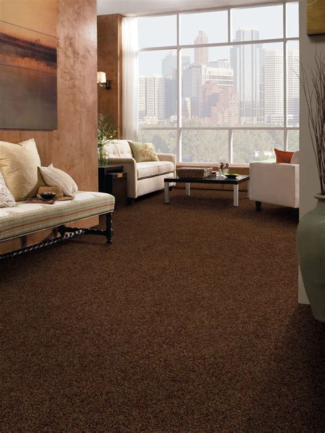 Decorating Ideas For Living Room With Blue Carpet by Brown Carpet Living Room Ideas