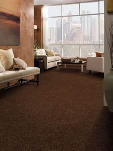 amazing tuftex carpet decorating ideas With carpet designs for living room