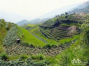 Longsheng Rice Terraces, China | Worldwide Destination ...